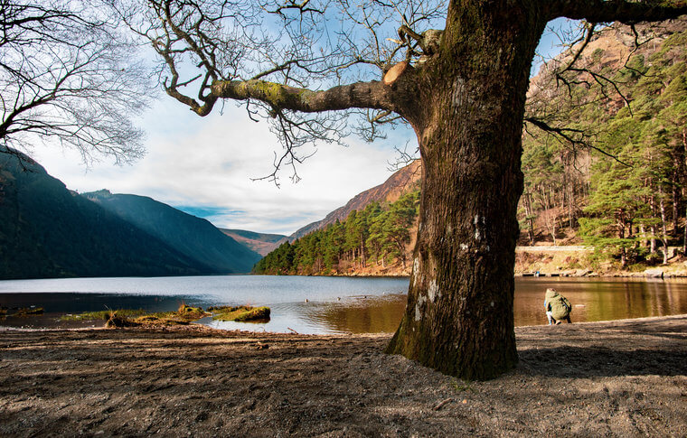 A person crouching next to Glendaloughs upper lake with a big tree in the middle